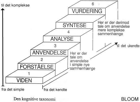 problemformulering dansk